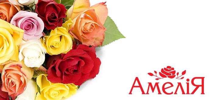 http://amelia-flowers.com/images/stories/slider/slide3.jpg